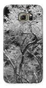 Frozen Trees Galaxy S6 Case