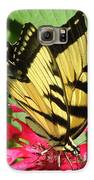 Gathering Nectar Galaxy S6 Case by Kim Galluzzo Wozniak
