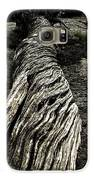 Gnarled Galaxy S6 Case by Christian Rooney