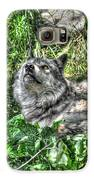 Grey Wolf Dreaming Galaxy S6 Case