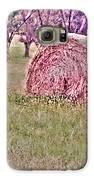Hay Stack Galaxy S6 Case by Sarah E Kohara