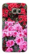 In A Blaze Of Color_3 Galaxy S6 Case by Halyna  Yarova