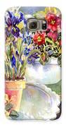Kitchen Primrose Galaxy S6 Case by Ann  Nicholson