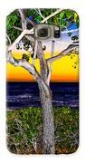 Ko Olina Tree In Sunset Galaxy S6 Case