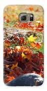 Leaves Falling Galaxy S6 Case