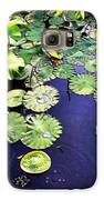 Lilly Pad Galaxy S6 Case