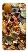 Macro Shells On Sand3 Galaxy S6 Case by Riad Belhimer