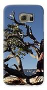 Manzanita Galaxy S6 Case by Kenneth Hadlock