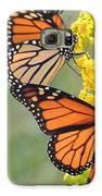Monarch Gathering Galaxy S6 Case by Laurence Van Oliver