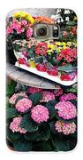 Montpellier Flower Shop Galaxy S6 Case by Victoria Herrera
