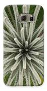My Giant Sago Palm Galaxy S6 Case by Rebecca Cearley