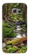 Nature's Art Galaxy S6 Case by Pamela Winders