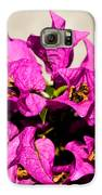 Pink Bougainvillea Classical Galaxy S6 Case