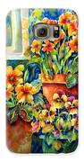 Potted Pansies II Galaxy S6 Case by Ann  Nicholson