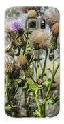 Purple Thistle Galaxy S6 Case by Gerald Murray Photography