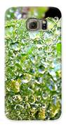 Lambs Ear Raindrops Galaxy S6 Case by Candice Trimble
