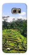 Rice Terrace In Bali Galaxy S6 Case by Lars Ruecker
