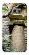 Roman Stone  Galaxy S6 Case