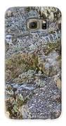 Siskiyou Sedums Galaxy S6 Case by Dan A  Barker