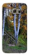 Stairway To Fall Galaxy S6 Case by Kathy DesJardins