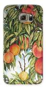 Summer Peaches Galaxy S6 Case by Helen Klebesadel