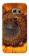 Sunny Sunflower Galaxy S6 Case