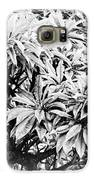 Tree Bush Vignette Galaxy S6 Case by Lisa Cortez