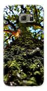 Tree Scales Galaxy S6 Case by Christian Rooney