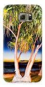 Trees At Night Galaxy S6 Case by Lisa Cortez