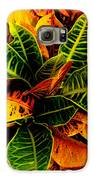 Tropical Croton Vignette Galaxy S6 Case by Lisa Cortez