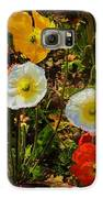 Wild Poppies Galaxy S6 Case by Helen Carson