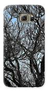 Winter Tree Hill End Nsw Galaxy S6 Case by Ian  Ramsay
