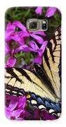 Spring's Beauty Galaxy S6 Case by Crystal Joy Photography