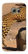 The Spotted Cat Galaxy S6 Case by Farah Faizal