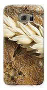 Close Up Bread And Wheat Cereal Crops Galaxy S6 Case by Deyan Georgiev
