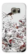 A Little Bird So Cheerfully Sings Galaxy S6 Case by Guy Ricketts