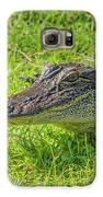 Alligator Up Close  Galaxy S6 Case by Allen Sheffield