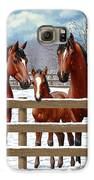 Bay Quarter Horses In Snow Galaxy S6 Case