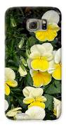 Beautiful Yellow Pansies Galaxy S6 Case
