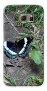 Beauty On The Dusty Path Galaxy S6 Case by Carrie Viscome Skinner