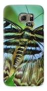 Beauty On The Wing Galaxy S6 Case by Lori Frisch