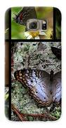 Butterfly Collage 1 Galaxy S6 Case