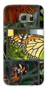 Butterfly Collage 2  Galaxy S6 Case by April Wietrecki Green