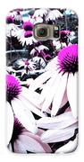 Cone Flower Delight Galaxy S6 Case by Kevyn Bashore