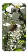 Dogwood Daze Galaxy S6 Case by Carrie Viscome Skinner