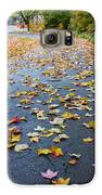 Fall Leaves Galaxy S6 Case by Michael Tesar