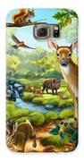 Forest Animals Galaxy S6 Case by Anne Wertheim
