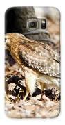 Hawk And Gecko Galaxy S6 Case by George Randy Bass