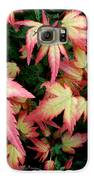 Japanese Maple Galaxy S6 Case by Cynthia Adams