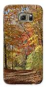 Leaf Covered Path Galaxy S6 Case by Kathy DesJardins